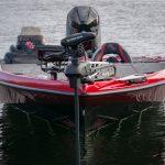 Bass Cat Jaguar Bow Light